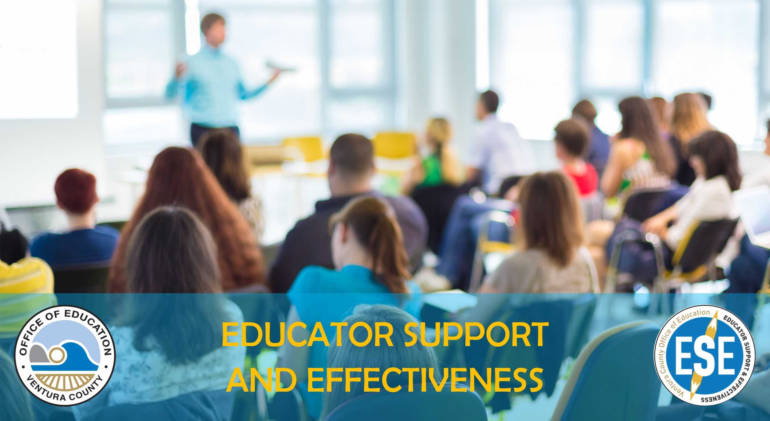 Educator Support and Effectiveness Picture